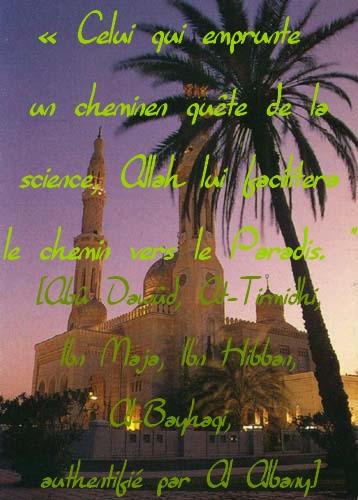 Mettez-vos Hadiths en image ici !!! Mosque11