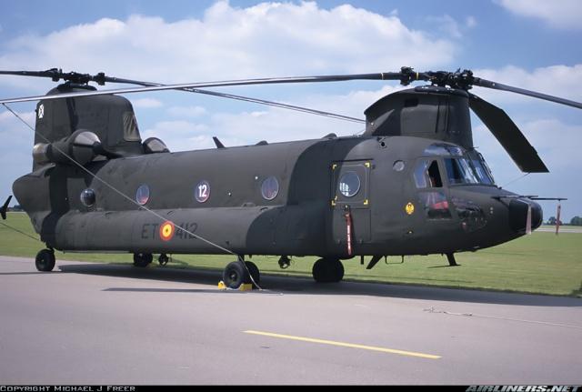 Armée de Terre Espagnole (News, Photos, Vidéos) Chinoo13