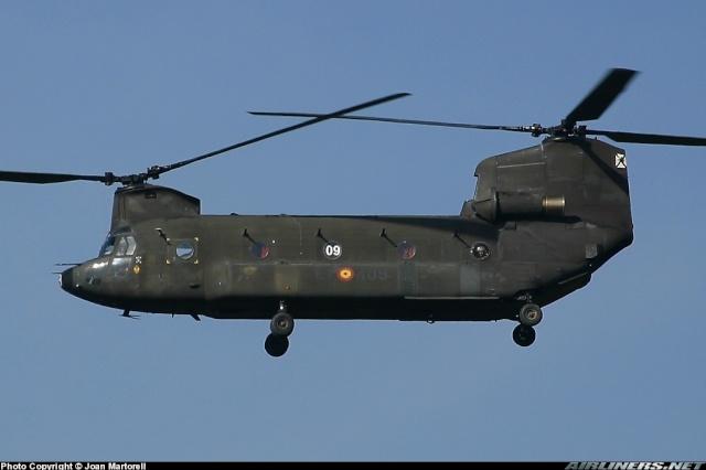 Armée de Terre Espagnole (News, Photos, Vidéos) Chinoo15