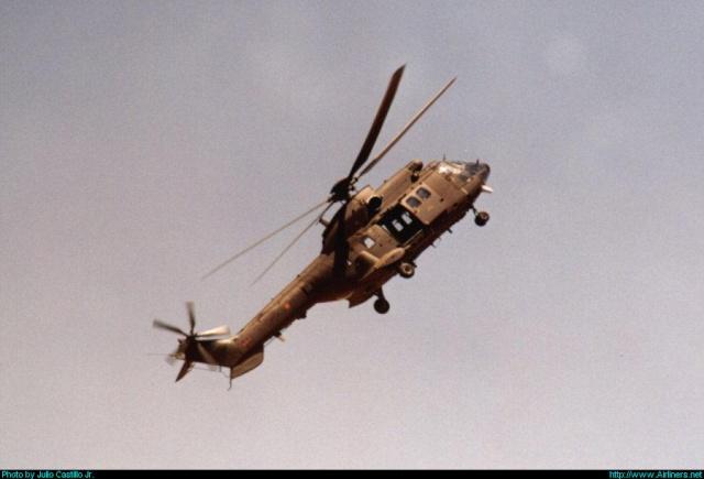 Armée de Terre Espagnole (News, Photos, Vidéos) Cougar10