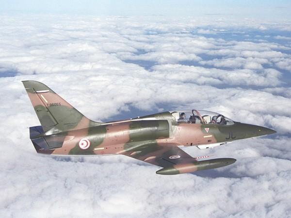 Armée de l'air Tunisienne L59_t10