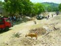Radiographie d'Haiti Carref10
