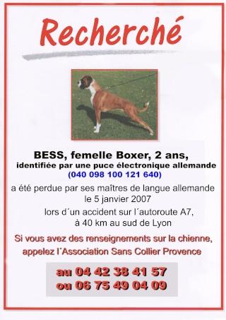 Urgent !!! Bess, boxer, puce allemande,  perdue lors d'1 acc Bess-s13