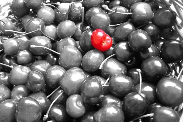 noir et rouge ... - Page 3 Cerise10