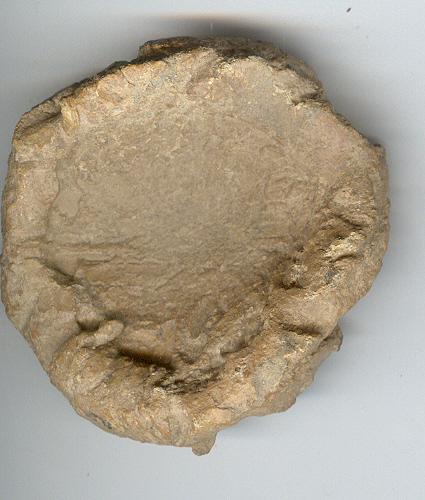 Plomo monetiforme o precinto: caballo Plomo_11