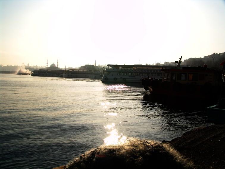 halic110.jpg