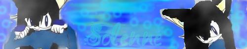 banniere solenne[F] New_po10