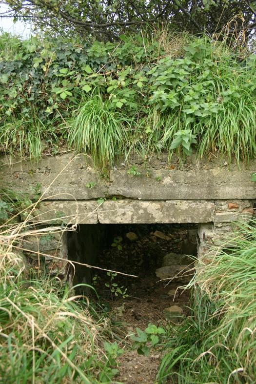 bunker24.jpg