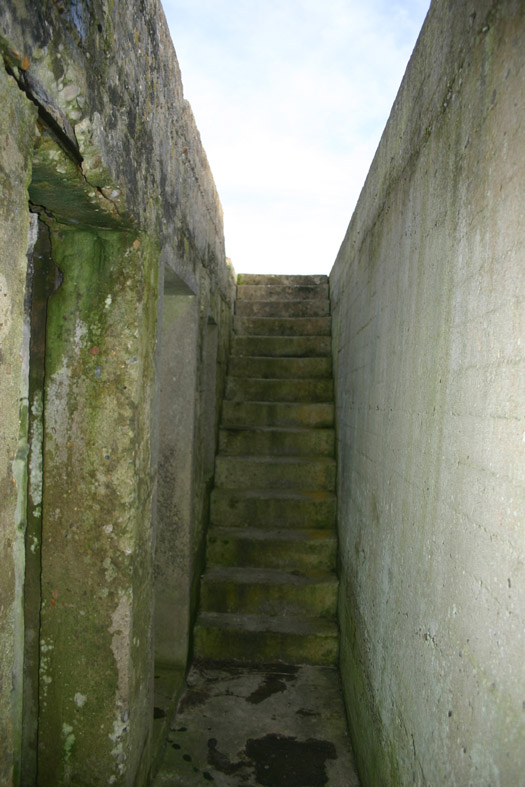 escali11.jpg