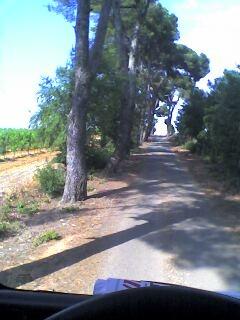 photo - Photo de route. Pictur11