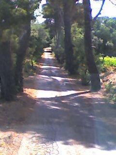 photo - Photo de route. Pictur12