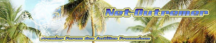 Bannière MadiGwada-DomTom & Net-outremer souvenir 750x1510