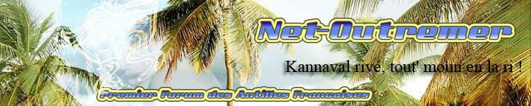 Bannière MadiGwada-DomTom & Net-outremer souvenir 750x1511