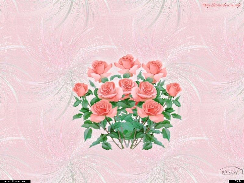 Les roses. - Page 7 55ec4f10