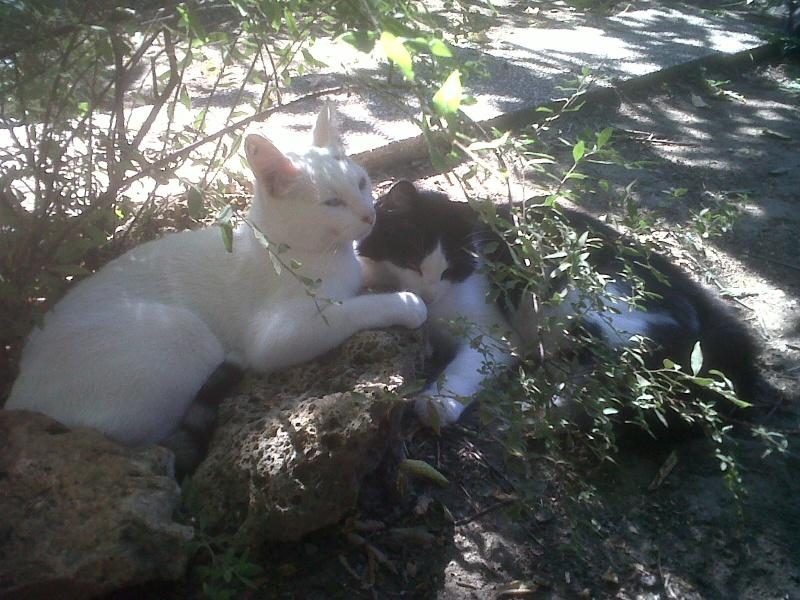 Dany et Milka