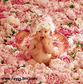 Flower Babies