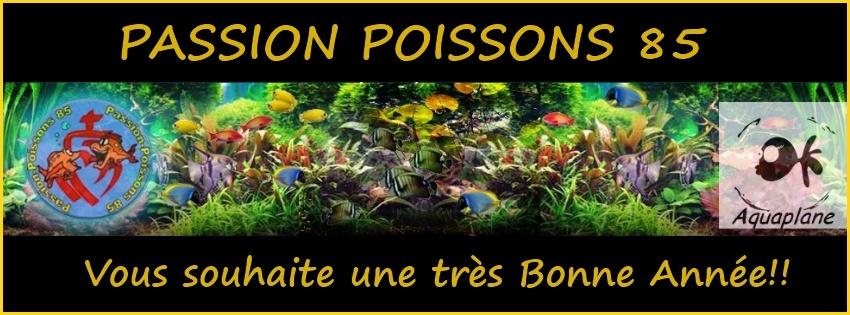 passion poisson 85..