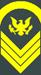 Sergeant 1st Class
