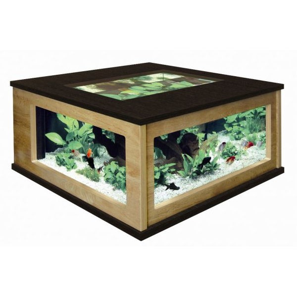 Table basse aquarium for Table basse fait maison