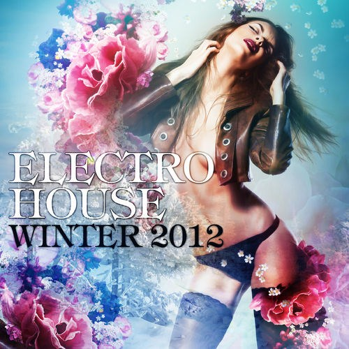 Electro House Winter (2012)