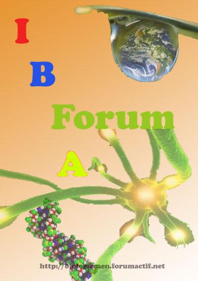 IBFA Forum