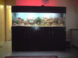 Meuble d aquarium for Meuble bas aquarium