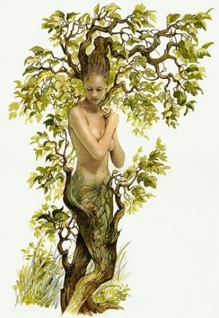 avatar de Jeannel