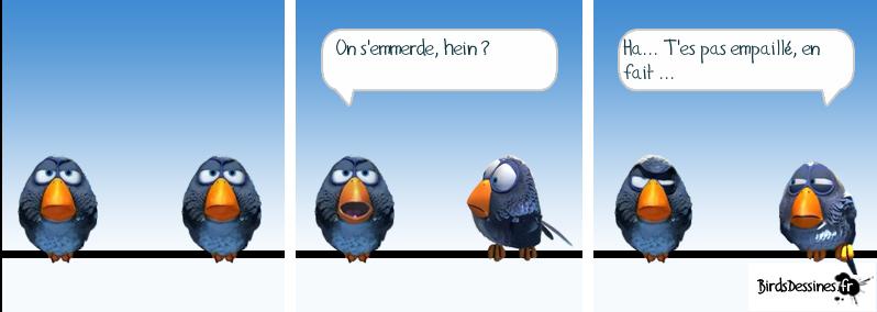 bird-e10.png