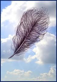 Ma plume a le tournis dans MOMENT DE VIE plumes10