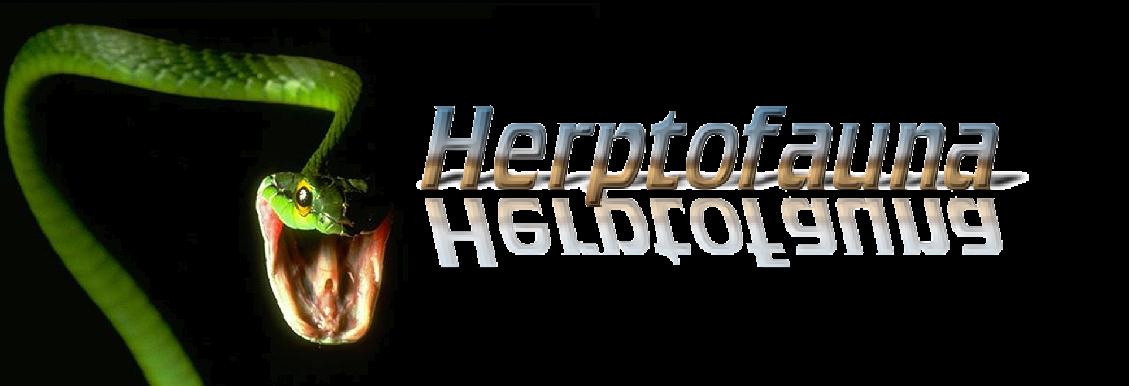 Herptofauna
