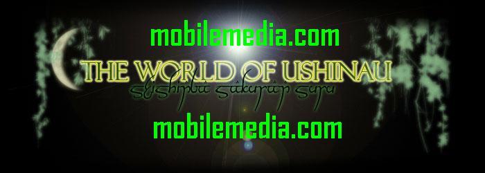 http://mobilemediaraipur.blogspot.com/