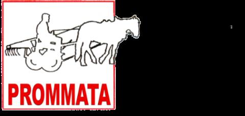 Forum d'échange autour de la traction animale en agriculture paysanne